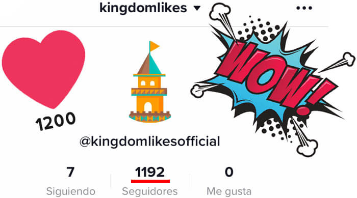 KingdomLikesTiktokFollowers
